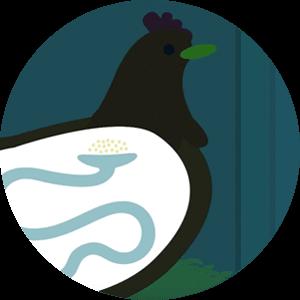 Biologie de la poule