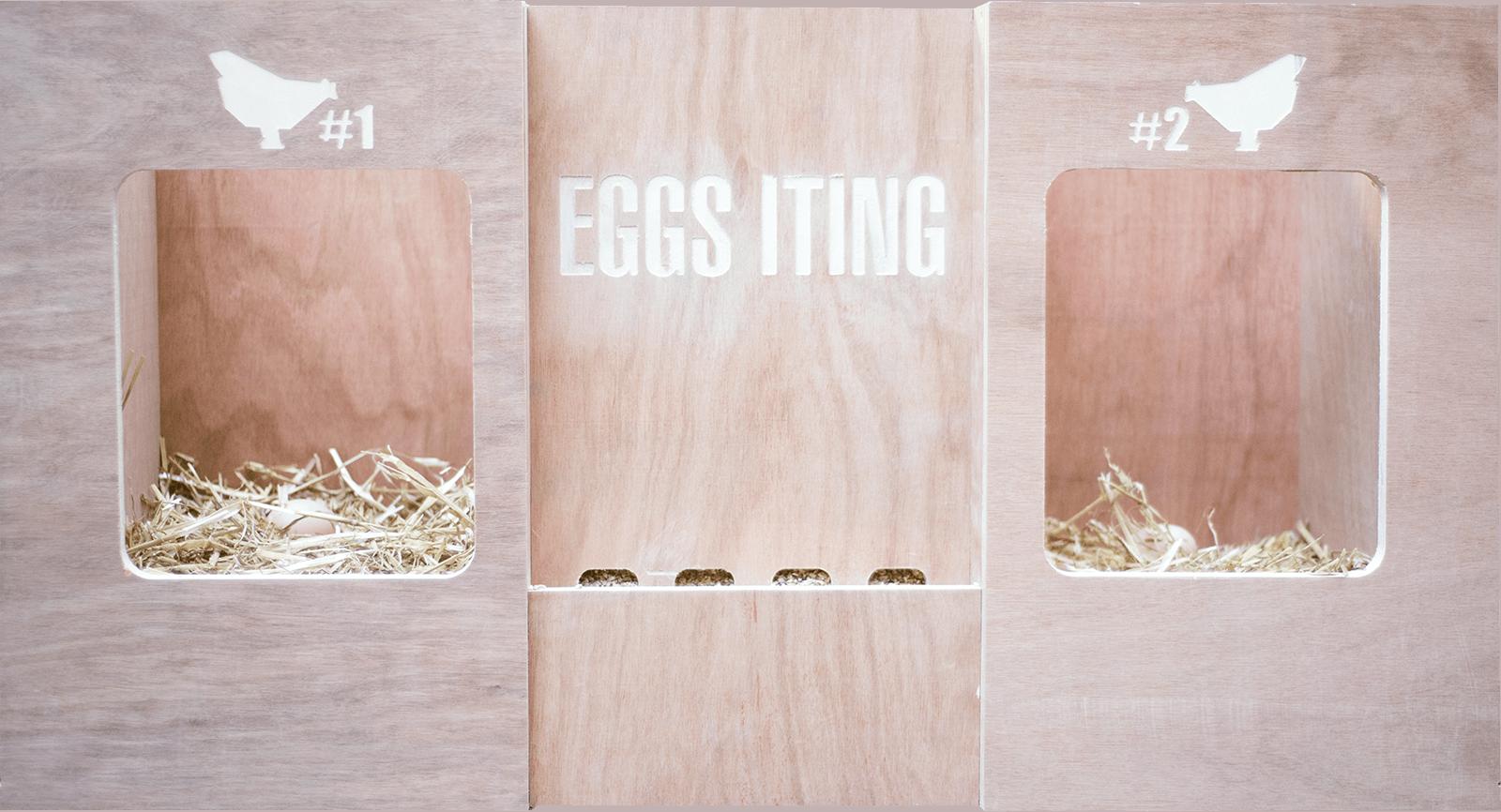 Prototype du nid eggs iting
