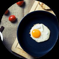 Des oeufs frais et sains pour les éleveurs Eggs iting