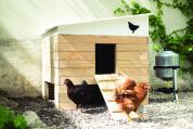 Poulailler Eggs iting avec poules pour print