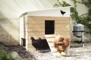 Poulailler Eggs iting avec poules